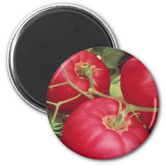 Home Grown Tomatoes 2 Inch Round Magnet