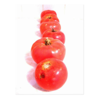home grown tomatoes Postcard