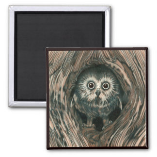 """""""Home in a Hole"""" Owl Magnet"""