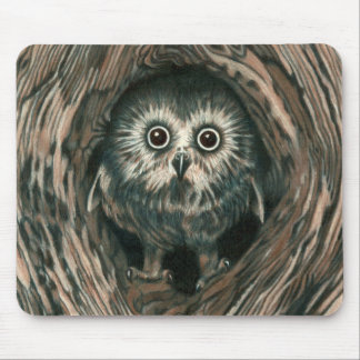"""Home In a Hole"" Owl Mousepad"