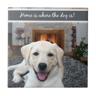 Home is where the dog is ceramic tile