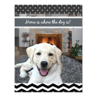 Home is where the dog is personalized announcements