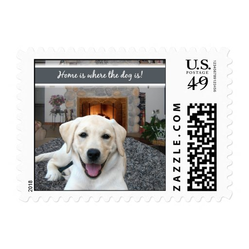 Home is where the dog is postage
