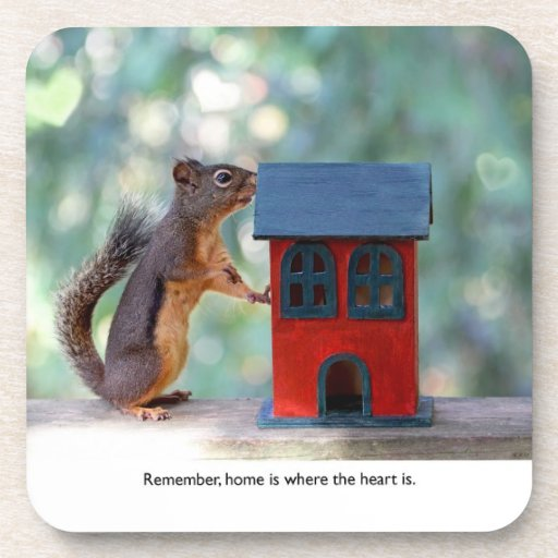 Home is Where the Heart Is Squirrel Coasters