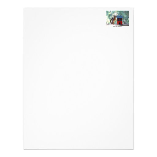 Home is Where the Heart Is Squirrel Letterhead