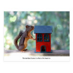 Home is Where the Heart Is Squirrel Post Card