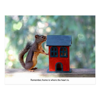 Home is Where the Heart Is Squirrel Postcard