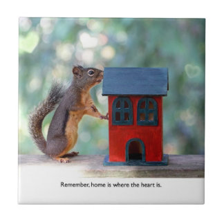 Home is Where the Heart Is Squirrel Tiles