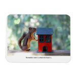 Home is Where the Heart Is Squirrel Vinyl Magnets