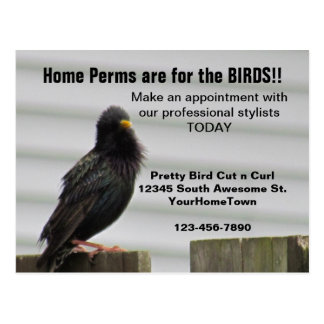 Home Perm Salon Mailer Post Cards