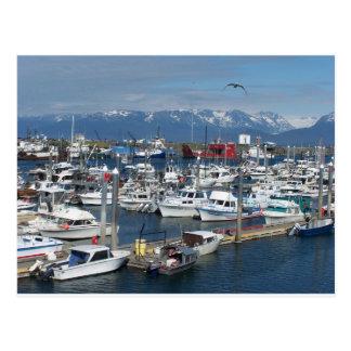 Home run Alaska Postales