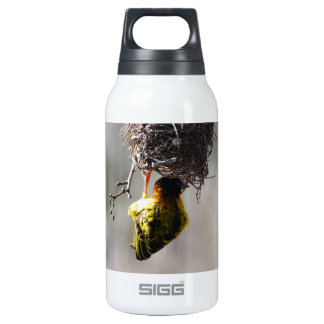 Home sweet home insulated water bottle
