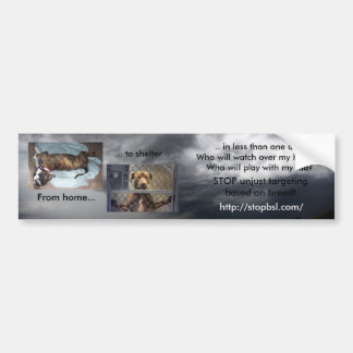 Home to Shelter Car Bumper Sticker