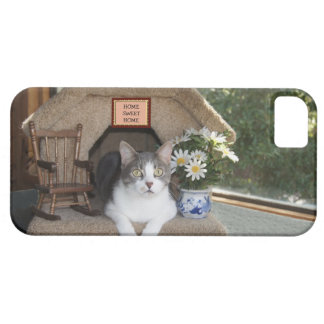 Homebody/Homeboy Kitty iPhone 5 Cover