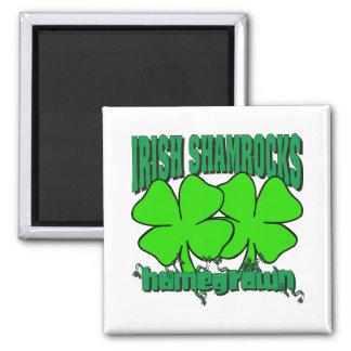 Homegrown Irish Shamrocks 2 Inch Square Magnet