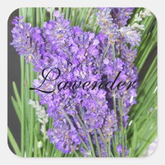 Homegrown Lavender Plant Label Square Stickers