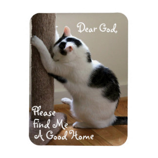 Homeless Cat's Prayer - Magnet Flexible Magnets