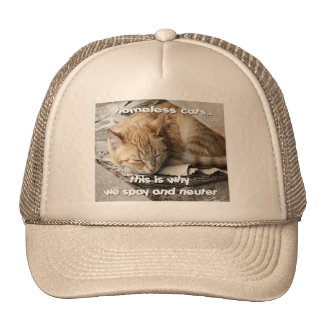 Homeless Cats Trucker Hat