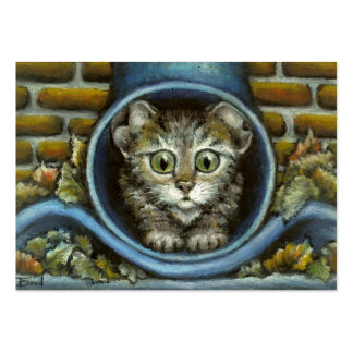 Homeless kitty hiding in a rain pipe business cards