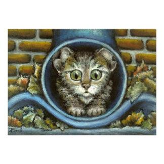 Homeless kitty hiding in a rain pipe invite