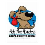 Homeless Pet Postcards