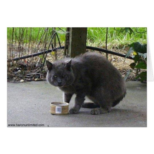Homeless Tom Cat Card