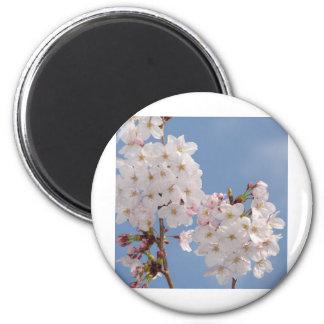Homemade Products of Sakura Flowers Fridge Magnet