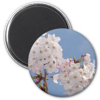 Homemade Products of Sakura Flowers Refrigerator Magnets