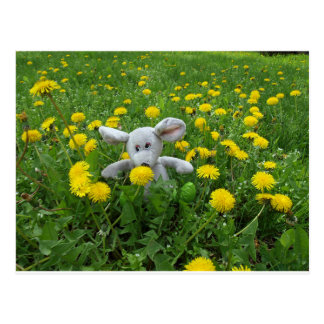 Homemade soft toy on the lawn postcard