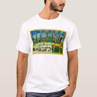 Homer, AlaskaLarge Letter ScenesHomer, AK T-Shirt