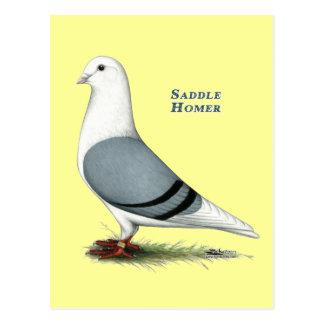 Homer Blue Saddle Postcard