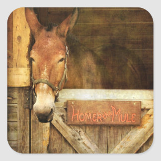 Homer the Mule Square Sticker
