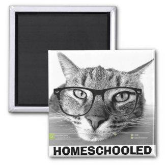 HOMESCHOOLED, Funny Cat Magnets