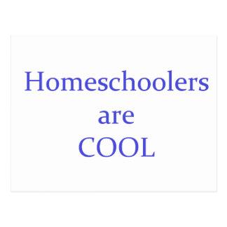 Homeschoolers are Cool Postcard