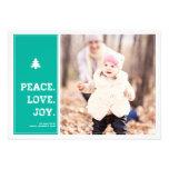 Homestead - Holiday Photo Card - Blue Custom Invitations
