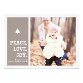 Homestead - Holiday Photo Card - Pink