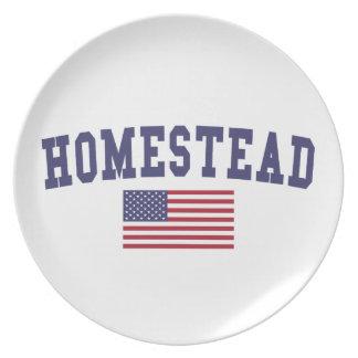 Homestead US Flag Dinner Plate