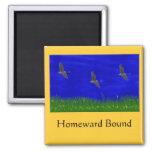 HOMEWARD BOUND FRIDGE MAGNETS