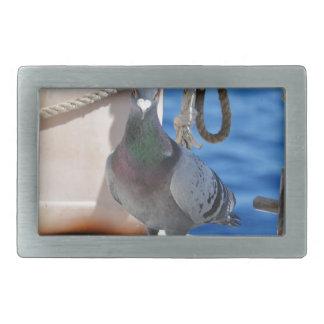 Homing Pigeon Belt Buckles