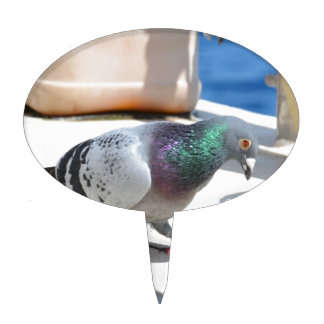 Homing Pigeon On A Yacht Cake Topper