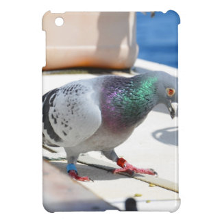 Homing Pigeon On A Yacht iPad Mini Cover