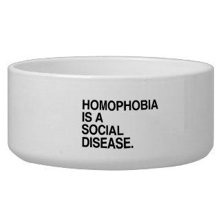 HOMOPHOBIA IS A SOCIAL DISEASE PET BOWL