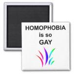 Homophobia is so Gay Fridge Magnet