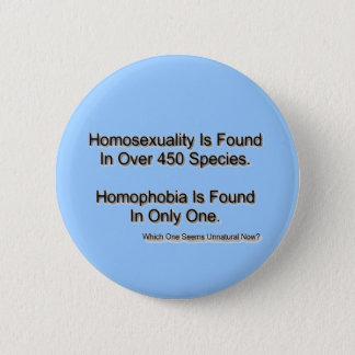 """Homophobia"" Pinback Button"