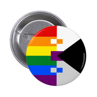 Homoromantic Demisexual Pin