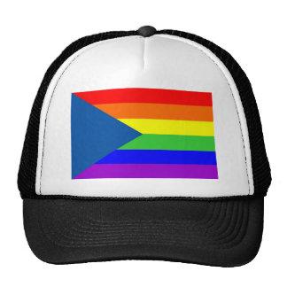 homosexual orgulloso gay de la bandera del arco ir gorro