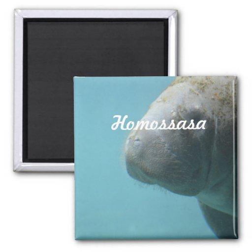 Homossasa Springs 2 Inch Square Magnet