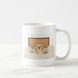 Hondje sitting in a trunk coffee mug