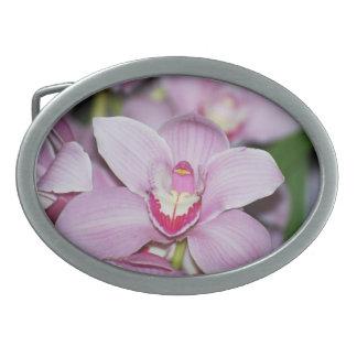 Honduran Orchids Belt Buckles