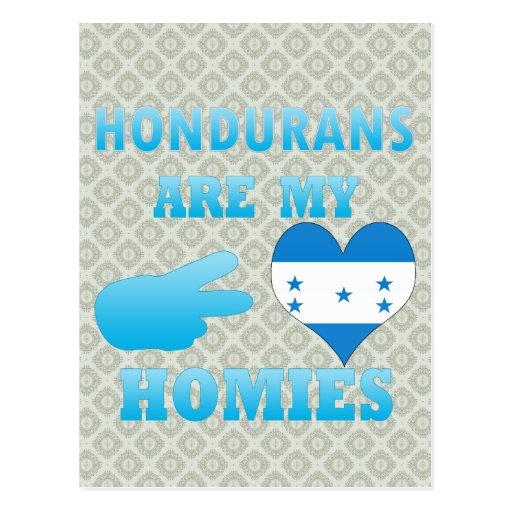 Hondurans are my Homies Postcards